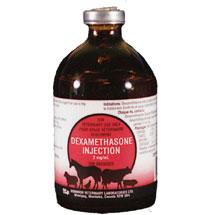 triamcinolone and dex shot for ponies